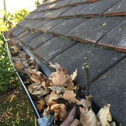 Autumn causes a leafy problem for gutters