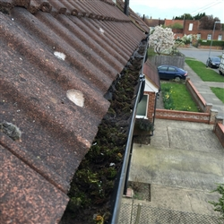 Gutter filled with moss before cleaning, Colchester, Essex