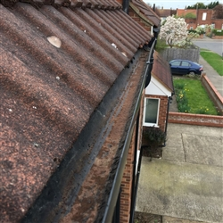 Gutter filled with moss after cleaning, Colchester, Essex