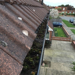 The moss invasion causes the guttering to become blocked