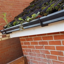 Gutter cleaning – Essential Autumnal property maintenance